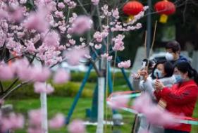 疫情倒逼求新求变中国旅游迎难而上寻生机