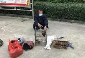 [茂名]化州一男子非法养殖野生动物被查处